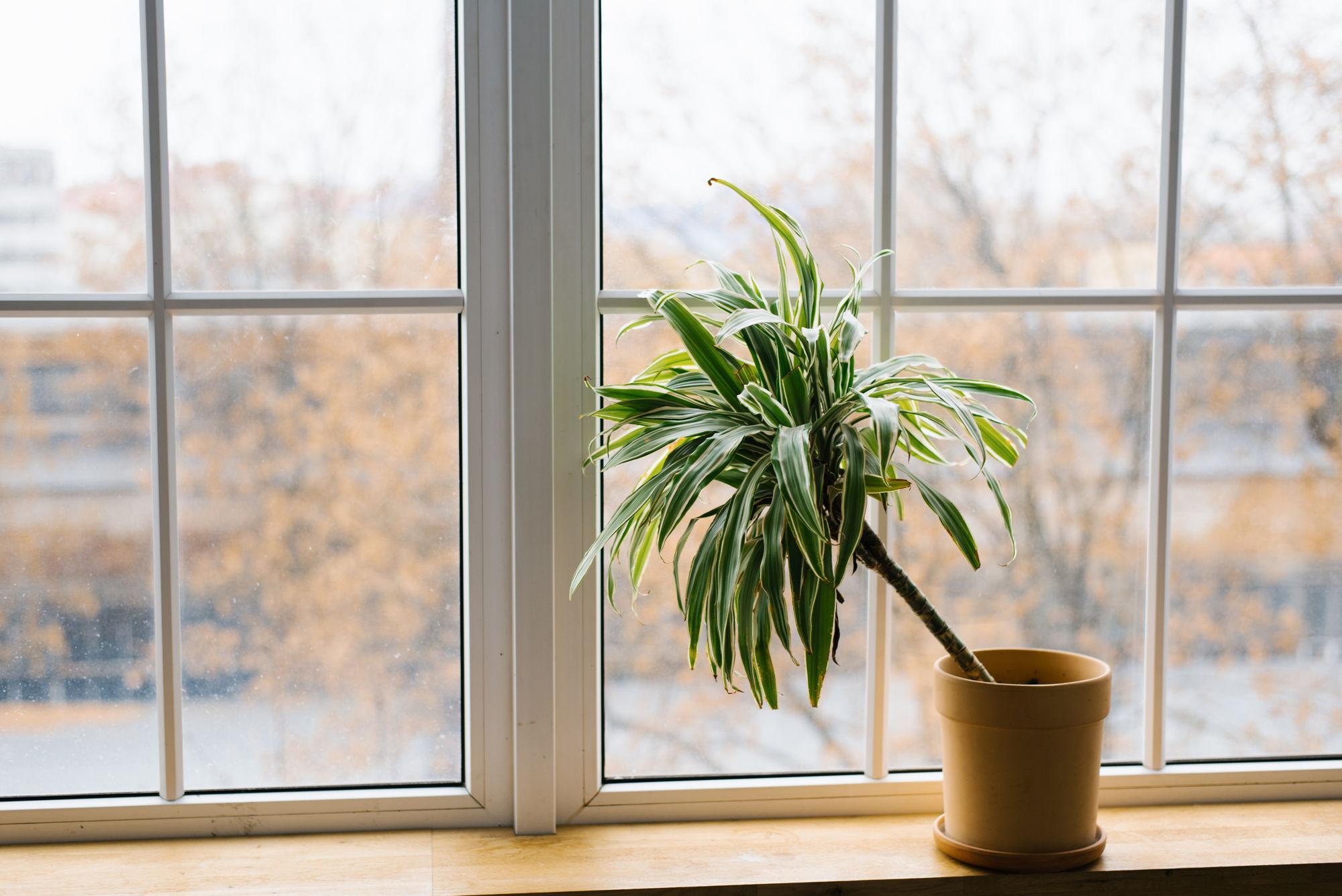 parapety - ozdoba okna - Stolmar Okna